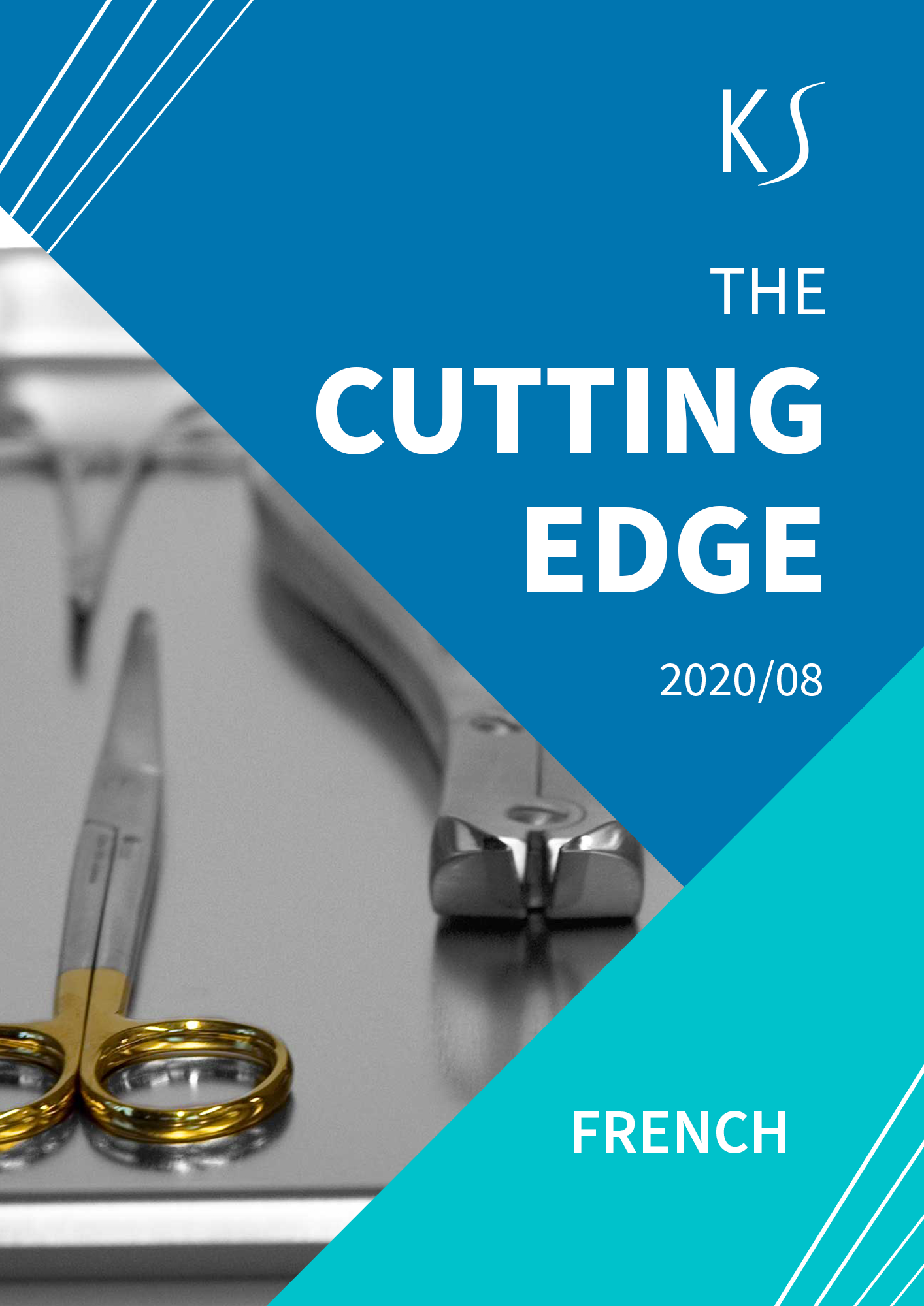 The Cutting Edge_French